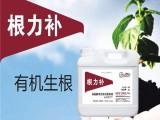 根力补叶面肥 水溶性肥料 果树蔬菜冲施肥