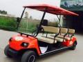 电动高尔夫看房车精致又实用阿童木电动车