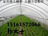 四川广安广安大棚骨架-合肥供应 简易棚 热镀锌钢管 大棚镀锌