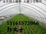 安徽淮北烈山温室大棚管 大棚钢管折弯拱形大棚钢管