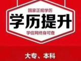 上海大学自考本科辅导班,专属班主任全程指导