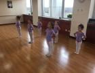 北京地坛附近哪里有少儿舞蹈培训 西城区培训舞蹈少儿