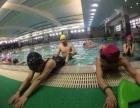广州室内游泳速成班,成人儿童一对一讲解教学