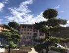 避暑圣地金洲国际际位于江津东胜(四面山后山)重庆人的后花园金兰凤