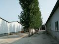 长安兴隆工业园有厂房2800平米1000平米出租