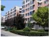 陕县-嵩基汇智公寓3室2厅-13万元