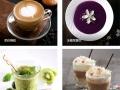 温州奶茶加盟哪家好