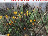 价格 莲都区pvc塑钢草坪护栏公园花园围栏厂家