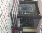 容城 黄金地段优势明显。 酒楼餐饮 商业街卖场