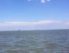 出海喽塘沽北塘出海捕鱼暑期特惠