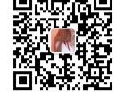 2020第13届武汉建材新产品招商暨全屋定制展览会