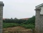 赣榆土地出租,如果需要可以根据要求建厂房