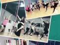 西安小寨零基础 舞蹈健身培训钢管舞 爵士舞 拉丁