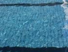 游泳馆就找广州艺浪康体