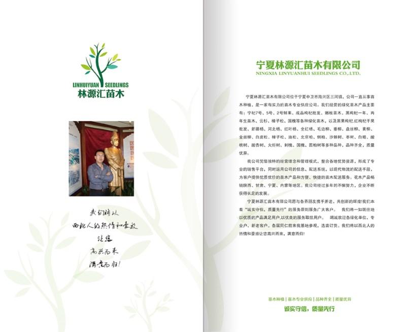 银川天脉网络企业VI设计 企业海报设计 企业画册设计