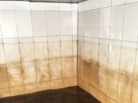 清溪清洗地毯 专业清洗空调 专业清洁外包公司
