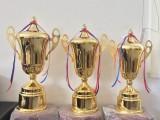 上海奖杯定制批发 水晶奖杯树脂奖杯金属奖杯琉璃奖杯定制