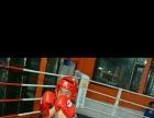 武术散打 拳击 女子防身术专业培训