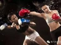 北京市专业泰拳散打综合格斗培训中心