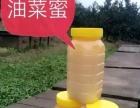 纯天然蜂蜜批发