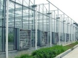 你看到的并不是你认为的玻璃温室大棚,这才是