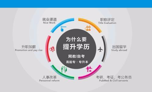 上海人力资源自考本科 上海师范大学自考专升本