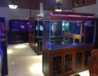 鱼缸加盟合作-中山水族鱼缸厂家批发-珠海市香洲龙鱼世家水族馆