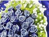 赤峰鲜花蛋糕礼品 生日节日鲜花蛋糕预定 送货上门