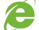 东晟电商平台建设服务项目