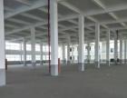 新北区百丈港口大道8500方标准厂房起租1700方