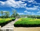 淄博园林式公墓 齐孝陵陵园 公益性墓地 免费接送参观考察