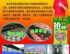 丰筵红粮酒加盟 名酒 投资金额 1-5万元