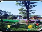 常州公司团队龙凤谷定向越野寻宝活动 特色休闲团建 拓展活动