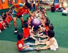 青岛市散打 跆拳道 武术 搏击 乒乓球 足球等培训
