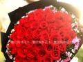 情人节鲜花预定,顶极花材,款式多价格低
