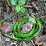 tpr软胶蛇 假蛇 仿真 眼镜蛇 模型 整蛊道具 1.2米