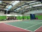 首钢篮球中心网球培训