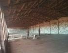 南六庄 仓库 700平米厂房+15亩大院