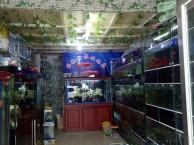 张村夜市附近45平营业中水族馆转让