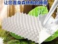【进口天然乳胶枕】加盟官网/加盟费用/项目详情
