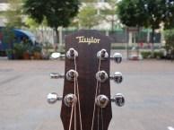 龙岗吉他培训 泰勒吉他 不存在按弦手指疼痛的问题