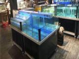 衡陽海鮮池價格 認準海鯊廠家