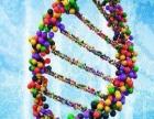代理基因检测项目哪个品牌好