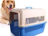 广州24小时在线接送宠物服务,全国接送