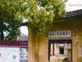 湘潭县晓霞山生态旅游投资合伙加盟 其他