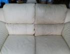 低价承接、凤岗、清溪、塘厦、各种地毯沙发、专业清洗