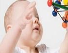 爱和自由育儿网 爱和自由育儿网加盟招商