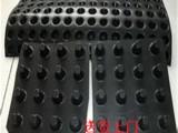 卷材防渗排水板20滤水排水板厂家