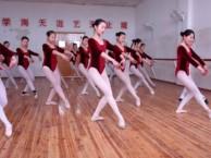 艺术高考生招生培训 音乐 美术 舞蹈 提供食宿