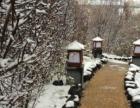 北国温泉特价温泉门票赠滑雪